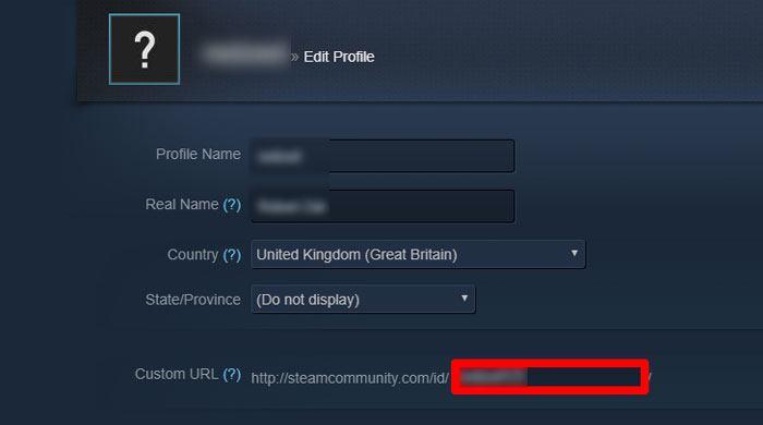 So finden und ändern Sie Ihre Steam-ID - 4