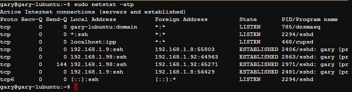 Anfängerhandbuch zum Beherrschen des Netstat-Befehls unter Linux