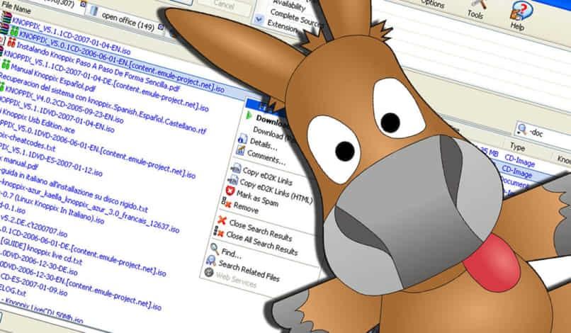 beste Torrent-Download-Seite