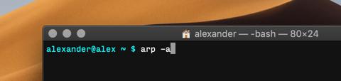 So scannen Sie Ihr lokales Netzwerk mit Terminal unter macOS