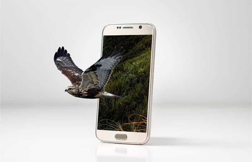 Laden Sie Mobdro auf Android einfach und schnell herunter