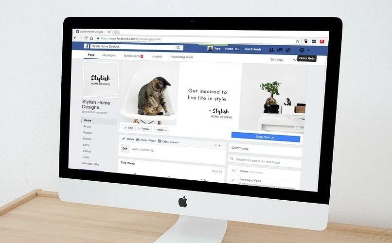 Suche auf Facebook nach Personen ohne Account